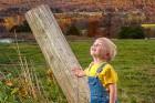 Wonderful Autumn Day - senior photography basics